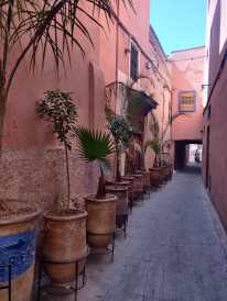 Holiday in Morocco